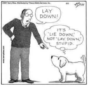 Dog grammar cartoon